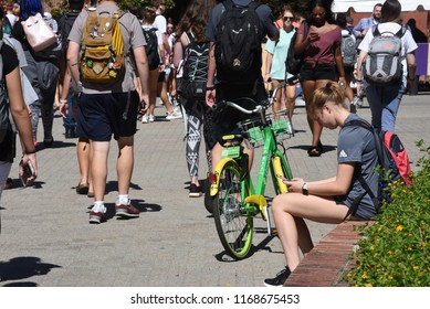 Greenville, NC/United States- 08/29/2018: A female college student sits and checks her phone as others walk past.