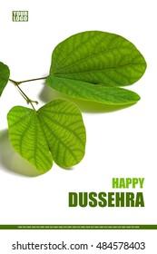 Greeting card design of Indian Festival Dussehra, showing golden leaf (Piliostigma racemosum).