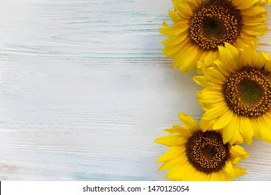 Greeting card design with sunflowers on gray wooden background. Frame for text with flowers of sunflower. Photo sunflowers with the place for copywriting. View from above