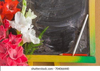 Greeting card with fresh gladiolus flowers. Education celebration concept. Empty place for a text on the school blackboard.