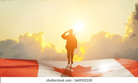 Greeting card for Poppy Day , Remembrance Day . Canada celebration. Concept - patriotism, honor . 3D illustration