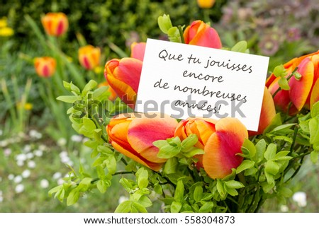 Greeting Card Tulips French Text Congratulations Stock Photo Edit