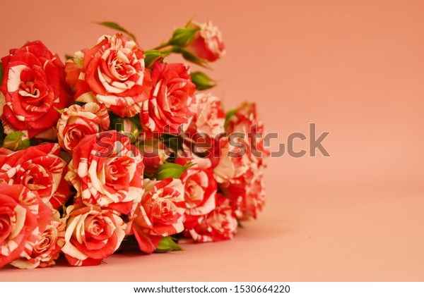 greeting card womens day beautiful 600w 1530664220