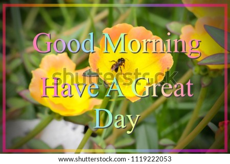 Greeting Concept Good Morning Have Great Day Blurred Stock Photo