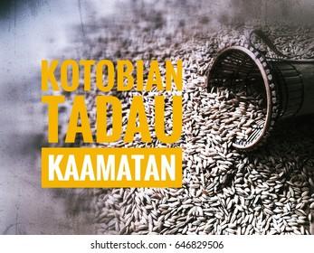 "greeting wording written ""Kotobian Tadau Kaamatan"" translation of Kadazandusun language meaning Happy Harvest Festival. Vintage paddy rice background"