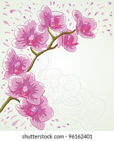 Greetings card for holiday with orchid flowers. Raster version.