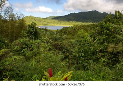 Grenada island - Grand Etang National Park - Grand Etang Lake