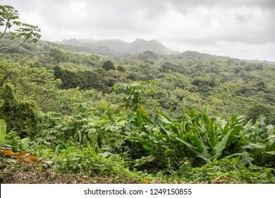 Grenada landscape Caribbean sea