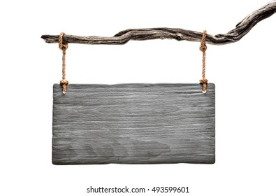 grey aged wood signboard hanged on a dead branch