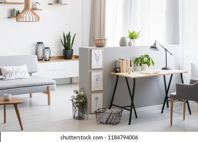 Grey armchair at desk with plant and lamp in flat interior with wooden table next to couch. Real photo