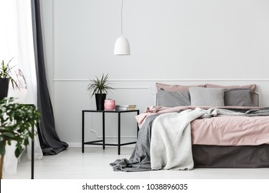 Grey bedsheets on bed in pink bedroom interior with plant on the table against white wall