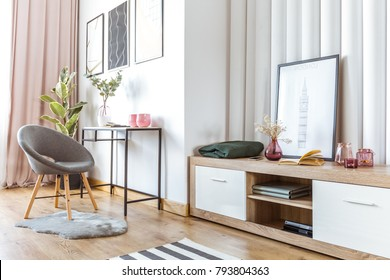 Grey chair on fur rug near wooden cupboard with flowers in pink pot and books in woman's living room interior with poster