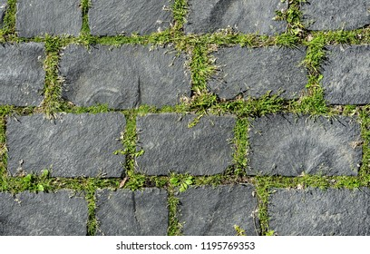 Grey coble stone background. Close up top view of monotone gray brick stone. Sidewalk or pavement with green grass