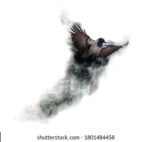 grey crow flying from smoke isolated on white background