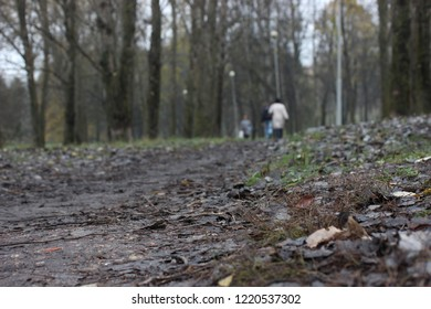 Grey, dark atumn way in the park. silhouette of people far away fallen leaves under foot after the rain