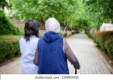 Grey haired senior woman with walking stick strolling with companion or female caregiver in a green alley. Away from the camera. Their backs in focus