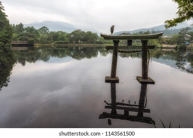 a grey heron sits on top of torii gate in kinrin lake in yufuin japan. Taken in the morning