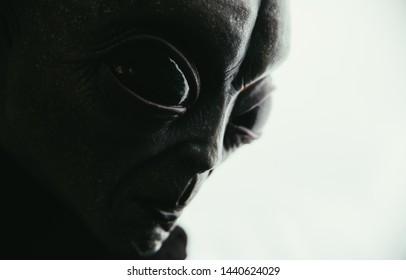 Grey humanoid alien . portraits set