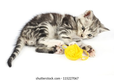 Grey kitten playing with yellow clew, isolated on white background