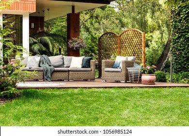 Grey pillows on beige rattan sofa near flowers at veranda surrounded by green grass