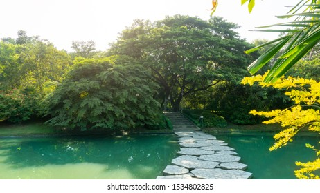 The grey stepping stone curve concrete walkway and a bridge cross a clean lake among greenery trees, shrub and bush in a park, good care maintenance landscapes under white clouds sky