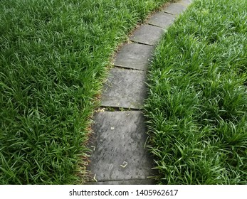 grey stone path or trail and green grasses