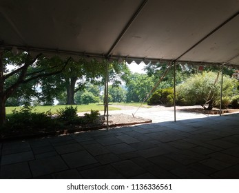 grey stone tiles and tent and trees
