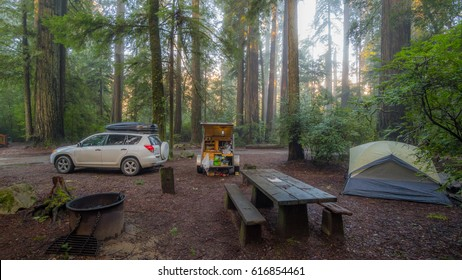 Grey tent and teardrop on a background of the Redwood Forest. White car on the camping. Redwood national and state parks. California, USA