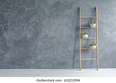 Grey and white room with wooden ladder with flowerpots