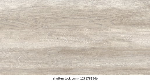 Grey wood texture. Scanned tree Texture for floor, furniture, buildings. Texture for website, background, wallpaper.