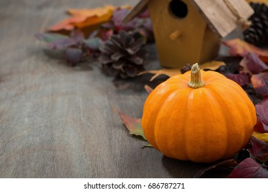 Grey wooden background with pumpkin and autumn leaves, closeup