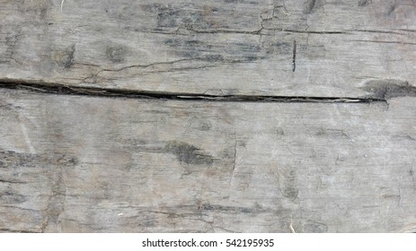 Grey wooden texture. Abstract background. Grey wood.