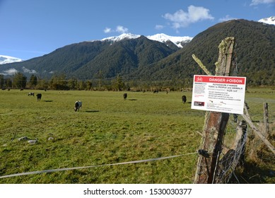GREYMOUTH, NEW ZEALAND, SEPTEMBER 25, 2019: Signage warns people that Potassium Cyanide has been spread in baits to kill possums on the West Coast of New Zealand.