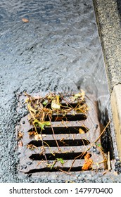 A grid/drain in the UK showing heavy rain draining away with debris