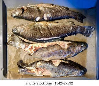 Grill fried trout fishes fresh out of the oven