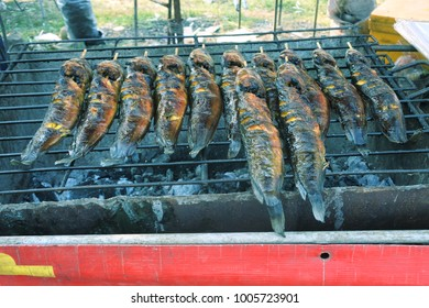Grilled catfish is very appetizing.
