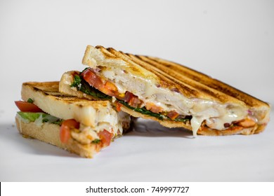 grilled chicken panini with tomatos isolated