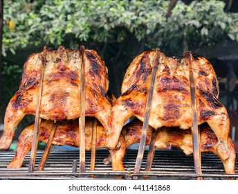 Grilled chickens on the grill