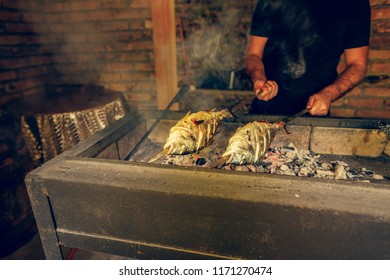 grilled fish food,  grill from a dorado, dorado on skewers, aurata fish