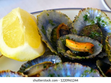 Grilled limpets served with lemon. Lapas grelhadas.Traditional dish of Madeira island,Portugal and a typical snack of the Canary Islands.Seafood concept.Selective focus.