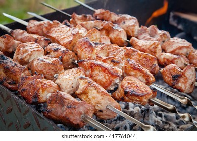 Grilled meat on the grill. Pork shish kebab on the nature.