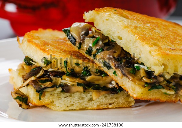 Grilled mushroom and Brie Cheese sandwich with bowl of soup