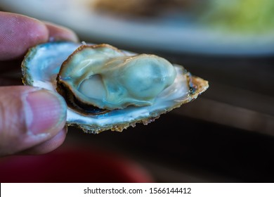 Grilled Oyster at Toba city Japan.