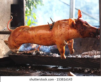 grilled pig on the fire
