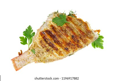 Grilled red perch fish isolated on white background