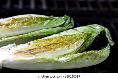 Grilled Romaine Lettuce Halves on the Barbecue.