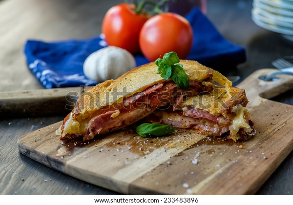 Grilled sandwich with some basil and tomatoes in the background