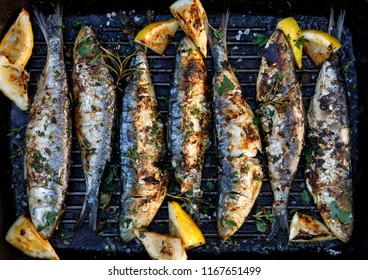 Grilled sardines in a herbal lemon marinade on a grill plate. Grilled food, barbecue