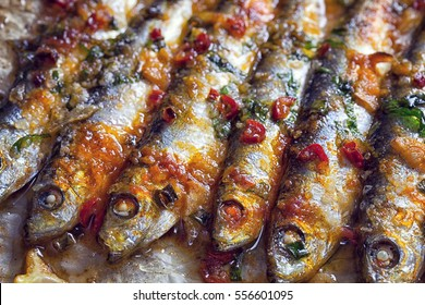 Grilled sardines on baking sheet