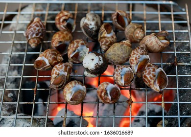 Grilled scallops  on flaming grill